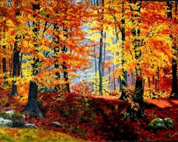 Jesen u bukovoj šumi