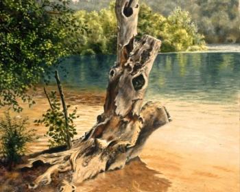 Jezero,Plitvice