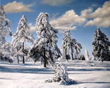 Zima,Kopaonik