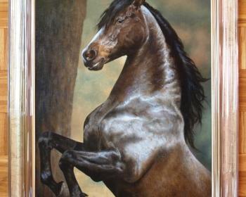 Konj Stribog
