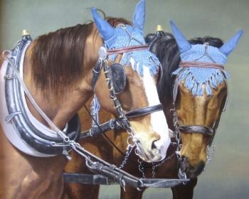 Par konja